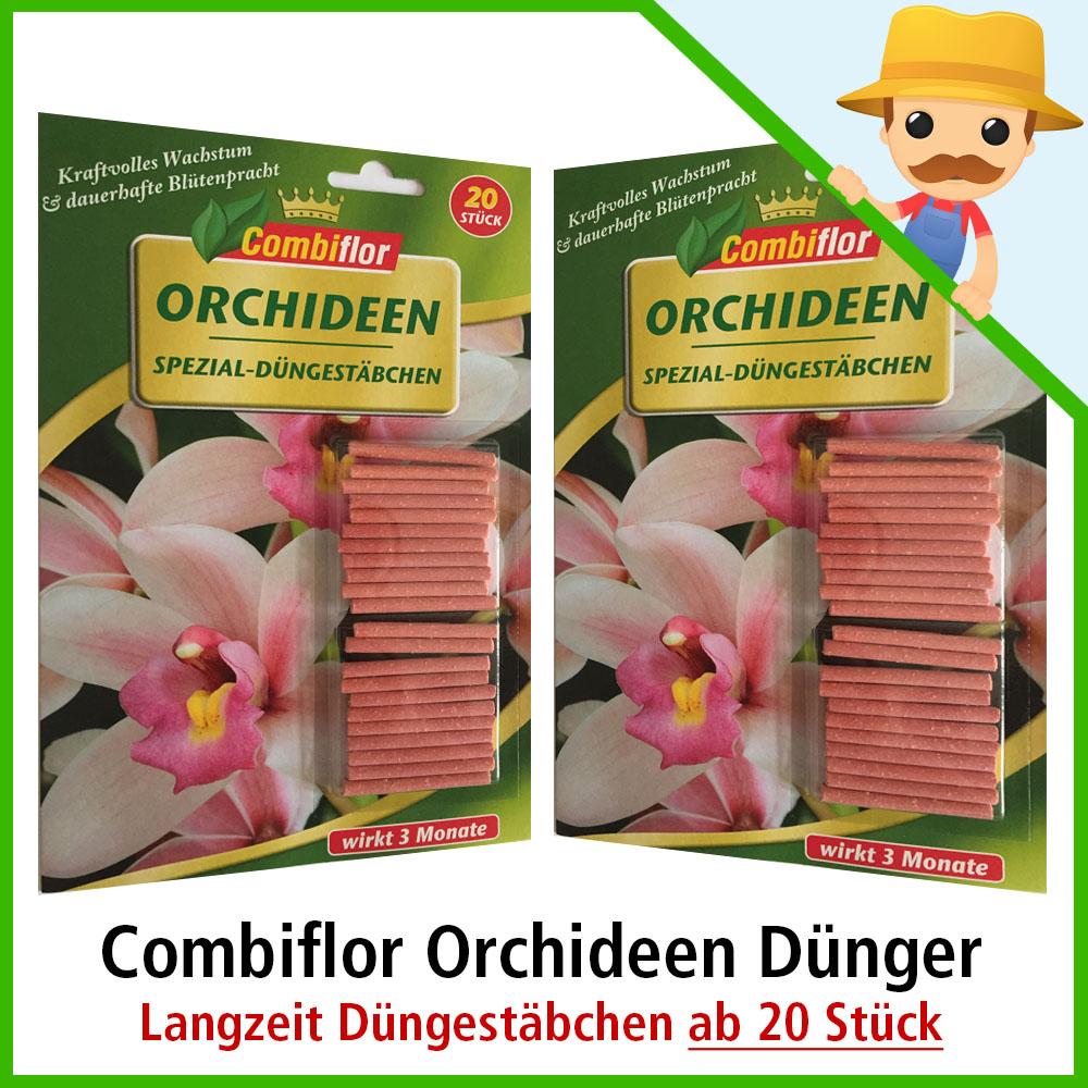 combiflor orchideend nger ab 20 stk orchideen. Black Bedroom Furniture Sets. Home Design Ideas